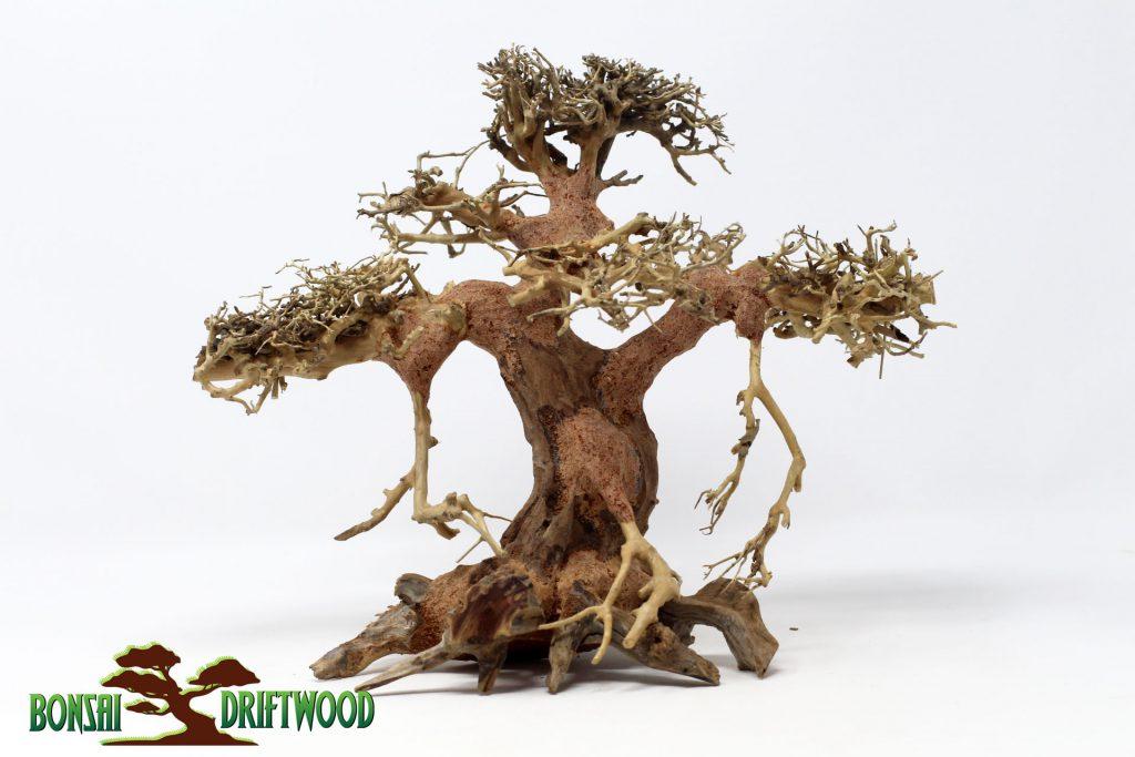 Một tuyệt tác được tạo ra bởi cửa hiệu Bonsai Driftwood tại Hereford Texas Hoa Kỳ